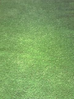 Astro Turf/Fake Grass Runner 6m x 1m