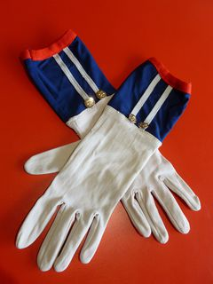 Novelty Gloves Assorted