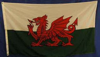 Wales (1.5m x 0.9m) [mat=polyester]