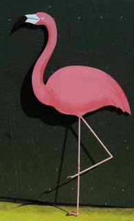 Flamingo Plywood Flat (H110cm x W70cm)
