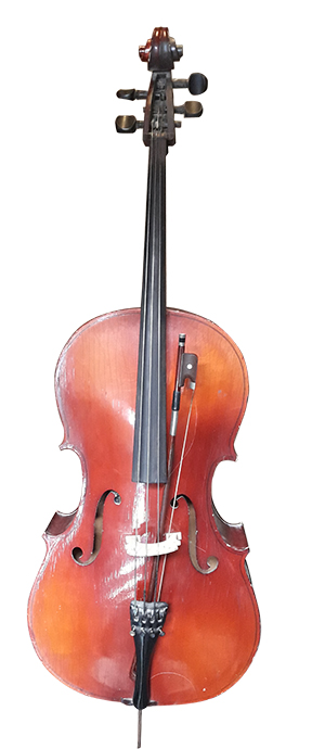 Cello 1.3m tall