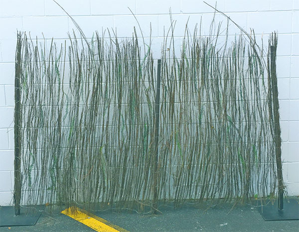 Brush Fencing 3 x 1.5m