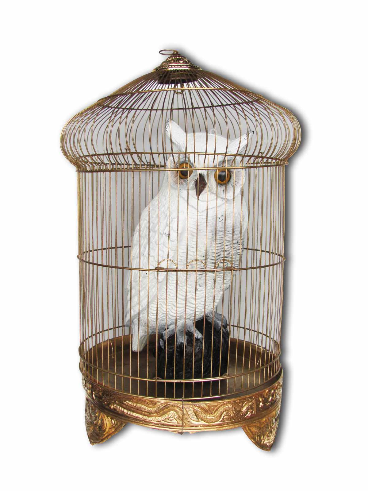 Owls - Hedwig (0.4m) Cage Included