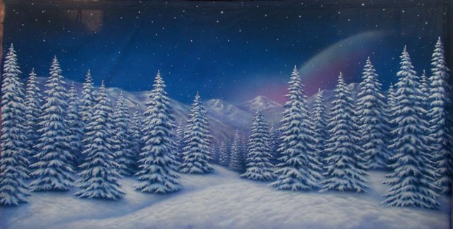 Winter Forest Backdrop 6 x 3m