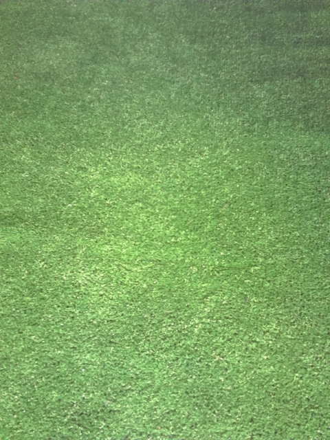 Astro Turf/Fake Grass Runner (0.9m x 2m)